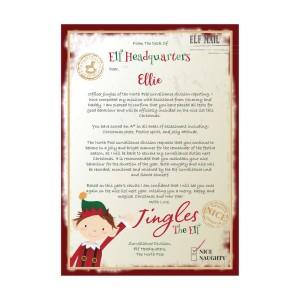 Personalised Elf Surveillance Christmas Letter
