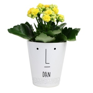 "Personalised ""Mr Face"" Plant Pot"