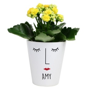 "Personalised ""Mrs Face"" Plant Pot"